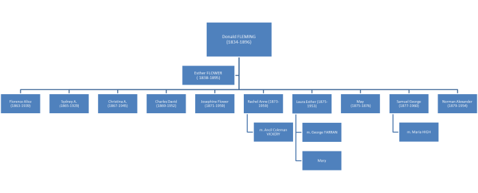 Donald  Fleming Family Tree