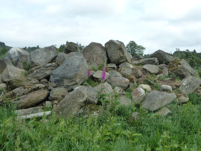 Rock pile of stones at the site of Alexander Fleming's house